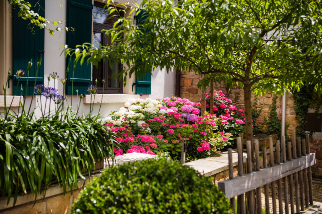 Loblocher Hof - Ferienwohnung 2 - Garten